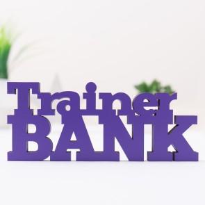 Dekoschriftzug Trainerbank