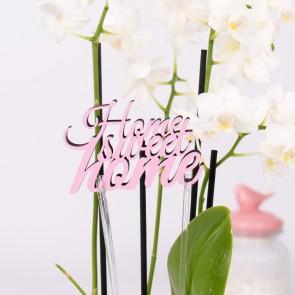 KLEINLAUT Halter für Blumen, 2 Stück