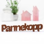 3D-Schriftzug Pannekopp